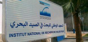 توقيف المهمة العلمية البحرية بالمعهد الوطني للبحث في الصيد البحري