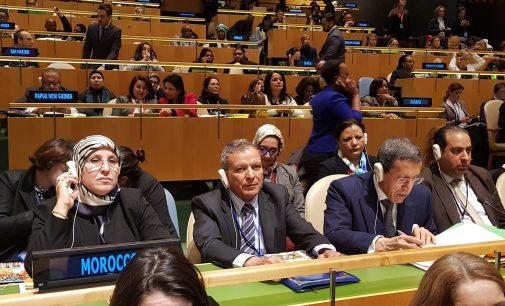 حمو أوحلي يستعرض بالأمم المتحدة البرامج والأوراش المغربية التي تروم تحسين وضعية المرأة القروية